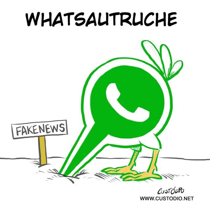 16_whatstruz_fr